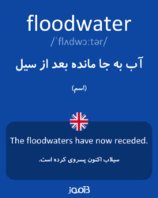 تصویر floodwater - دیکشنری انگلیسی بیاموز