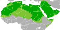 اطلاعاتی در مورد زبان عربی